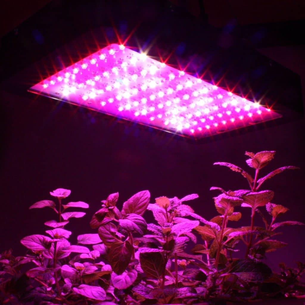 Фито светодиоды
